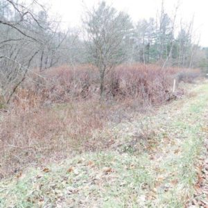 Land for Sale in Warren, PA – Page Hollow Rd