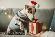 December Edition of American Lifestyle