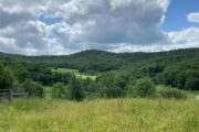 NEW LISTING - 805 Long Hollow Rd., Turtle Point, PA